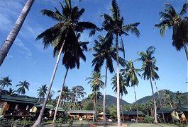 Lotus Resort