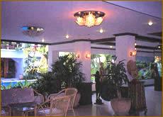 Comfort Resort Patong